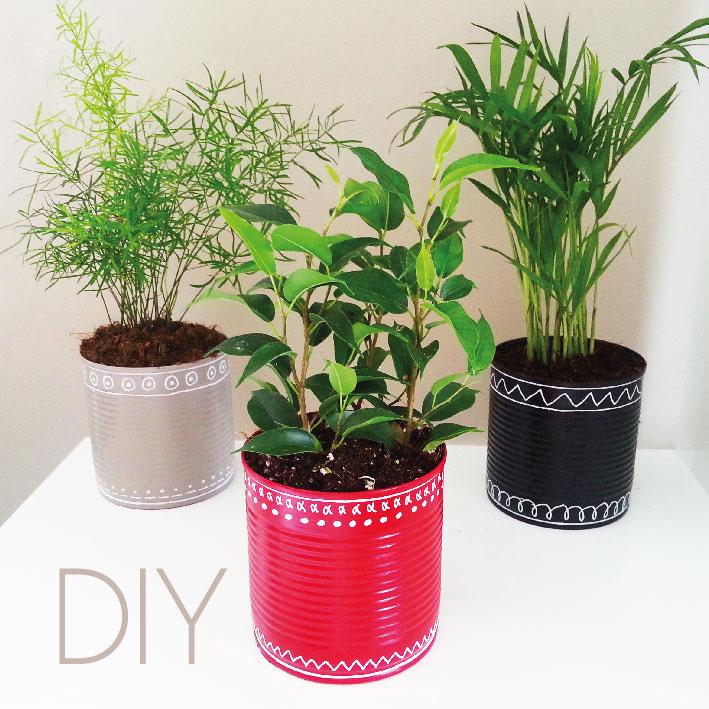 DIY : Transformer une conserve en pot de fleur !